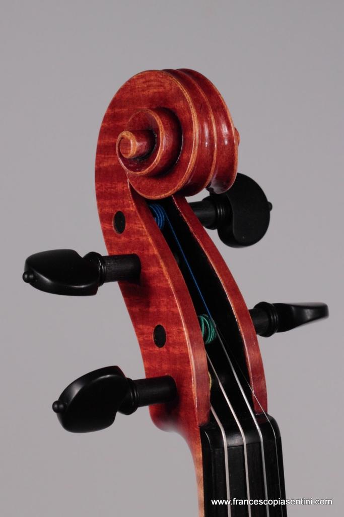 riccio violino modello Montagnana